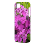 Purple Flowers from San Francisco iPhone SE/5/5s Case
