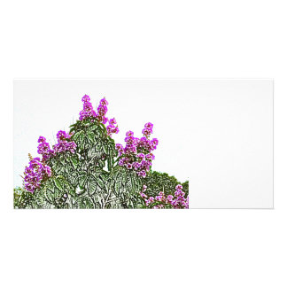 purple flowers green bush floral sketch design photo card