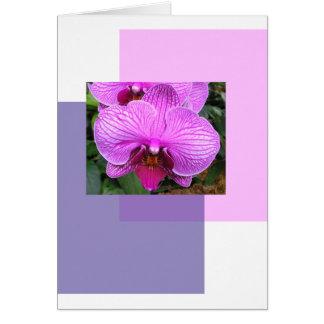 Purple Flowers Greetings Card