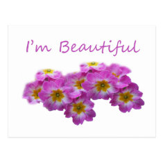Purple flowers, I'm beautiful Post Cards