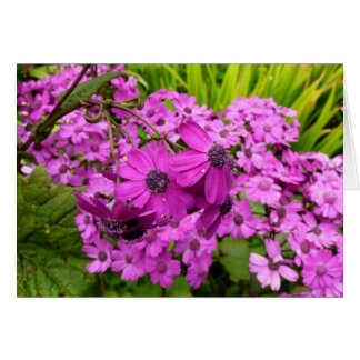 Purple Flowers in San Francisco Greeting Card