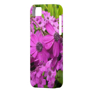 Purple Flowers in San Francisco iPhone 5 Case