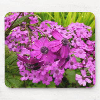 Purple Flowers in San Francisco Mouse Pad