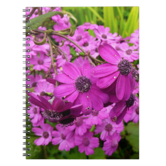 Purple Flowers in San Francisco Spiral Note Book