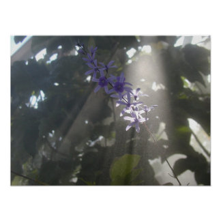 Purple Flowers in the Mist Poster