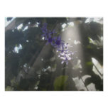 Purple Flowers in the Mist Print