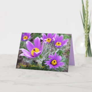 Purple flowers Mother's day photo card