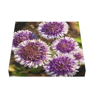 Purple Flowers Photo Single Canvas Print