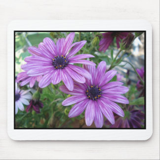 Purple Flowers Picture! Mouse Pad