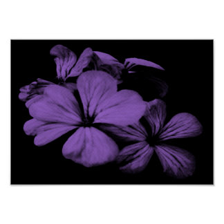 Purple Flowers Print