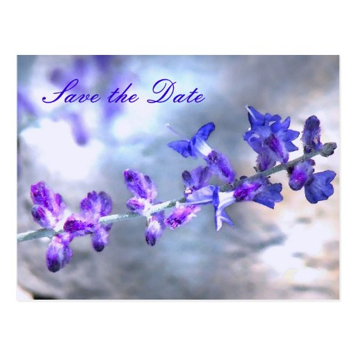 Purple Flowers Save the Date Postcard