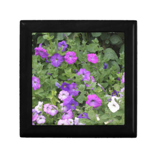Purple Flowers Spring Garden Theme Petunia Floral Gift Box