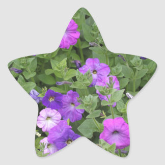 Purple Flowers Spring Garden Theme Petunia Floral Star Sticker