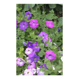 Purple Flowers Spring Garden Theme Petunia Floral Stationery