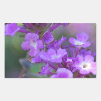 Purple Flowers Rectangular Sticker
