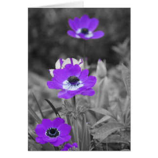 Purple Flowers Sympathy Card