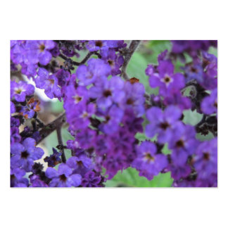 Purple Flowers Trading Card Large Business Card