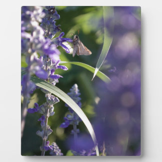 Purple Flowers with Moth Plaque