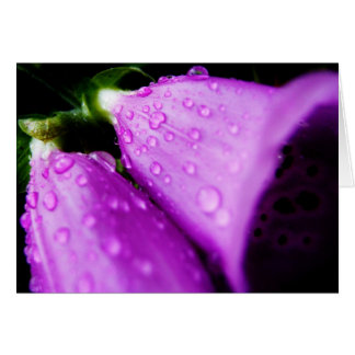 Purple foxglove w/ raindrops card