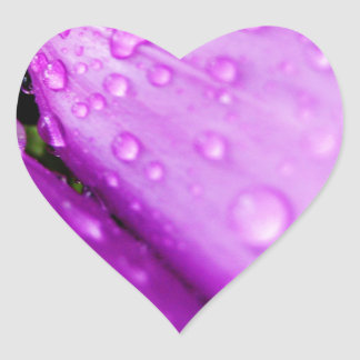 Purple foxglove w/ raindrops heart sticker