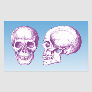 Purple Front Side Human Skull Rectangular Sticker