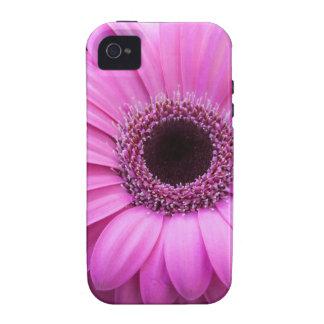 Purple Gebera Flower iPhone 4 Cover