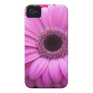 Purple Gebera Flower iPhone 4 Case-Mate Case