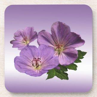 Purple Geranium Flowers Coaster