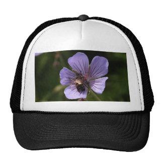Purple Geranium With Bee Trucker Hat