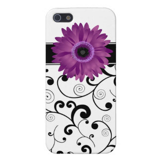 Purple Gerbera Daisy Black & White Scroll Cases For iPhone 5