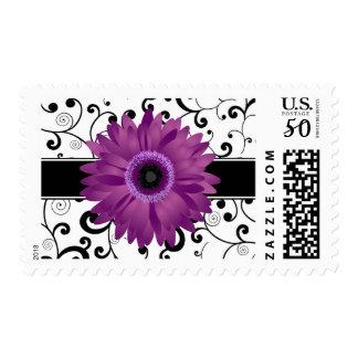 Purple Gerbera Daisy with Black Scroll Design Postage