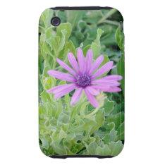Purple Gerbera Floral Iphone 3g/3gs Tough Tough Iphone 3 Case at Zazzle