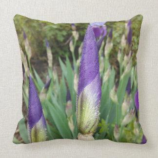 Purple German Iris Buds Throw Pillow
