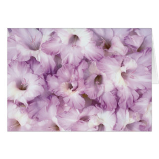 Purple Glads All Occasion Card