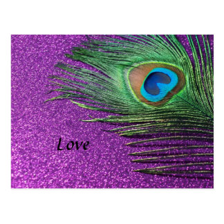 Purple Glittery Peacock Feather Still Life Postcard