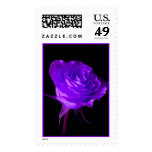 """""""PURPLE GLOW"""" ROSE POSTAGE STAMPS"""