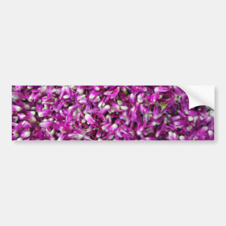 Purple Gomphrena Bumper Sticker