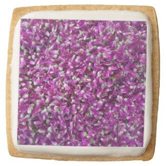 Purple Gomphrena Square Shortbread Cookie