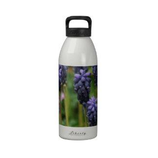 Purple Grape Hyacinth Wildflowers Drinking Bottles