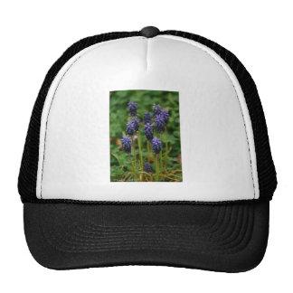 Purple Grape Hyacinth Wildflowers Trucker Hat
