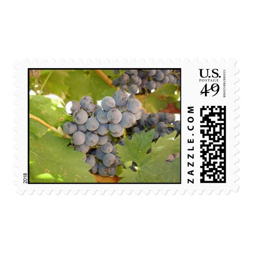 Purple Grapes Postage Stamps