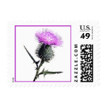 Purple, Green, White Thistle Postage Stamp