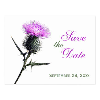 Purple Green White Thistle Save the Date Postcard