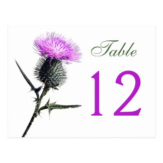 Purple, Green, White Thistle Table Number Card