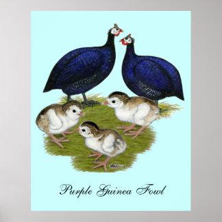 Purple Guinea Family Poster