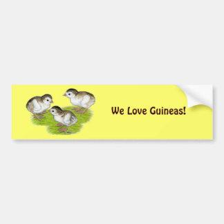 Purple Guinea Keets Bumper Sticker