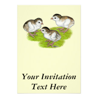Purple Guinea Keets Personalized Invitations
