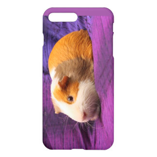 Purple Guinea Pig Cell Phone Case