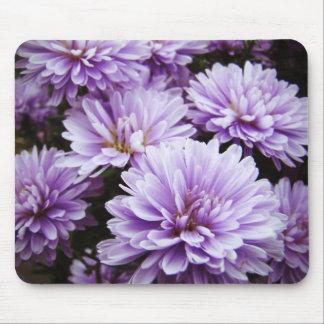 Purple Haze Chrysanthemums Mouse Pad