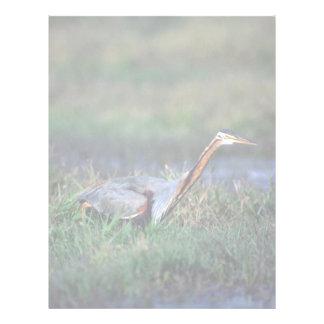 Purple Heron Letterhead